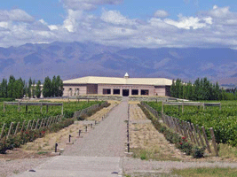 Salentein Single Vineyard
