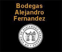 Ribera del Duero - Bodegas Alejandro Fernandez